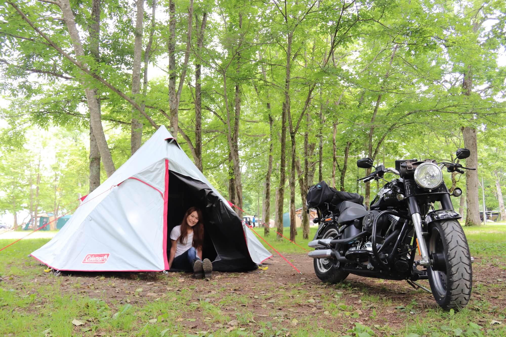 キャンプ ギア 最新